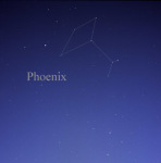 Constellation Phoenix